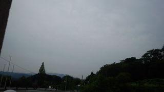 IMG_20120624_170635.jpg