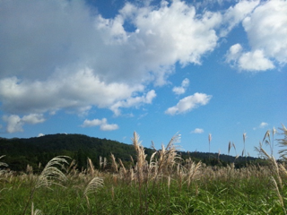 image-20121219135830.png