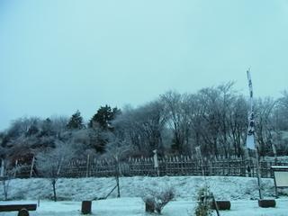 2011_12160013.JPG